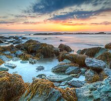 Sunrise at Sachuest Point Wildlife Refuge  by Joshua McDonough