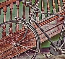 Vintage bike by Beverley Goodwin
