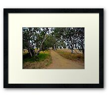 A Country Road Framed Print