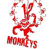 12 MONKEYs by Cheikon