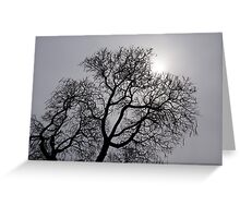 Pearly Silver Sky Filigree Greeting Card