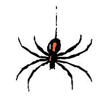 Artistic black widow spider ipad case Photographic Print