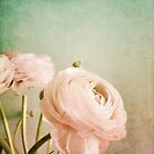 Vintage Romance by AllyNCoxon