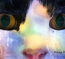 Just Cats II: Intensity by Bunny Clarke
