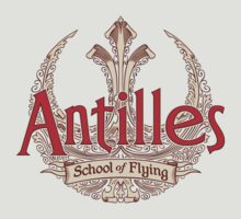 Antilles School of Flying (Light) by DoodleDojo
