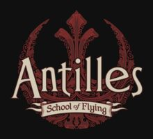 Antilles School of Flying (Dark) by DoodleDojo