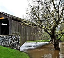 Hunsecker's Mill Covered Bridge by djphoto