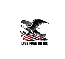 New Hampshire Live Free or Die Eagle & Shield Photographic Print