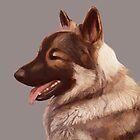 German Shepherd by Lauren Rakes
