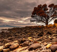 Coswell Beach by Mark Bilham
