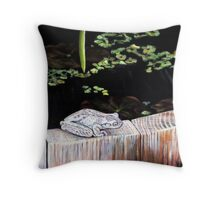 CHILLIN' AT THE LILY POND Throw Pillow