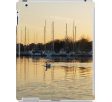 Golden Ripples and Reflections iPad Case/Skin