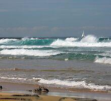 Raw Energy - Newcastle Beach by reflector