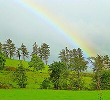 A Rainbow Over Irish Fields by Fara