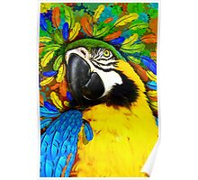 Gold and Blue Macaw Parrot Fantasy Poster