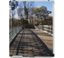 Central Park Bridge Shadows iPad Case/Skin