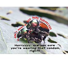 Ms. Bug doesn't want babies for a big surprise! Photographic Print