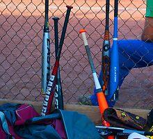 Baseball Bats by salyersjessica