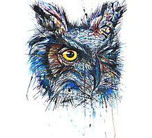 'Owl Insanity' 2014 (Full Image) Photographic Print