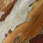 Tree Bark by Irina Chuckowree