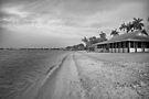 Morning at the Beach  by John  Kapusta