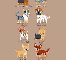 AUSTRALIAN DOGS by lilichin