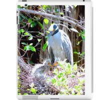 Night Heron Mom iPad Case/Skin
