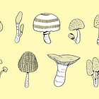 Mushroom by taichi