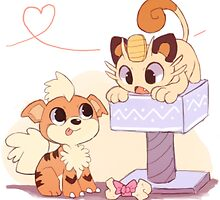 Cute Growlithe and Meowth <3 by PokemonSeita