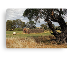 Barn and Bale in Hindmarsh Vale Canvas Print