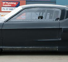 Mustang awaiting paint scheme by JimAndJules