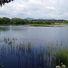Scottish Loch by ivanfeltonglenn