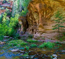 The West Fork Canyon by BGSPhoto