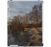 Autumn Tranquility iPad Case/Skin
