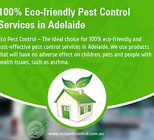 100% Eco-friendly Pest Control Services in Adelaide by EcoPestControl