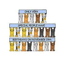 Cats celebrating birthdays on November 29th Photographic Print