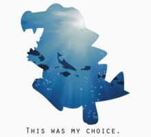 My Choice was Totodile by ArtichokesQueen