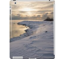 Icy, Snowy Lake Shore Morning iPad Case/Skin