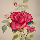 Pillow red rose by Beatrice Cloake