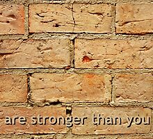 brick wall background with qoute by newbietraveller