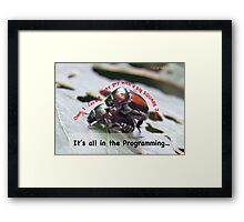 Sexual attraction, it's all in the Programming… Framed Print