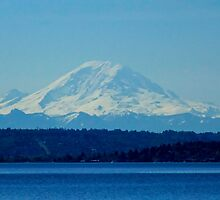 Blue Rainier by Sue Morgan