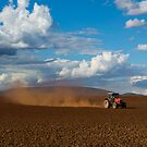 Diggin' up Dust by Laura Sykes