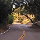 The Road To El Capitan Reservoir, San Diego , California, 11 by heatherfriedman