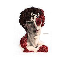 """Organic"" - sherlock portrait, full colour version Photographic Print"