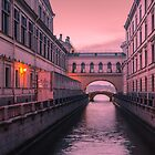 Hermitage Bridge, Saint Petersburg, Russia by LudaNayvelt