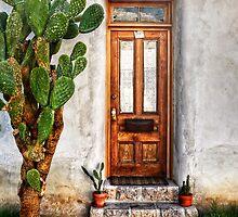Wood Door In Tuscon by Ken Smith