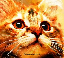 Just Cats II:  Love Me by Bunny Clarke