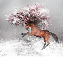 Horse in the snow by Gatterwe