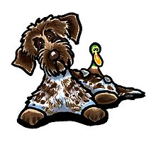 Wirehaired Pointing Griffon & Duck by offleashart